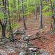 The Mehedinti Mountains, Romania - PhotoDune Item for Sale