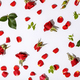 Floral pattern with red roses, petals and leaves on white background - PhotoDune Item for Sale