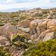 Mount Wellington Plateau - PhotoDune Item for Sale