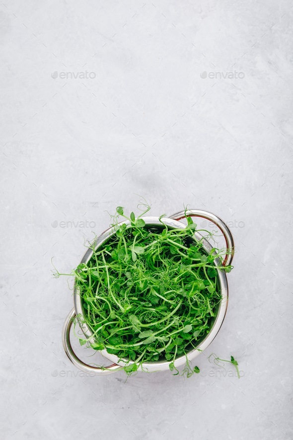 Fresh raw organic green pea shoots in colander, top view - Stock Photo - Images