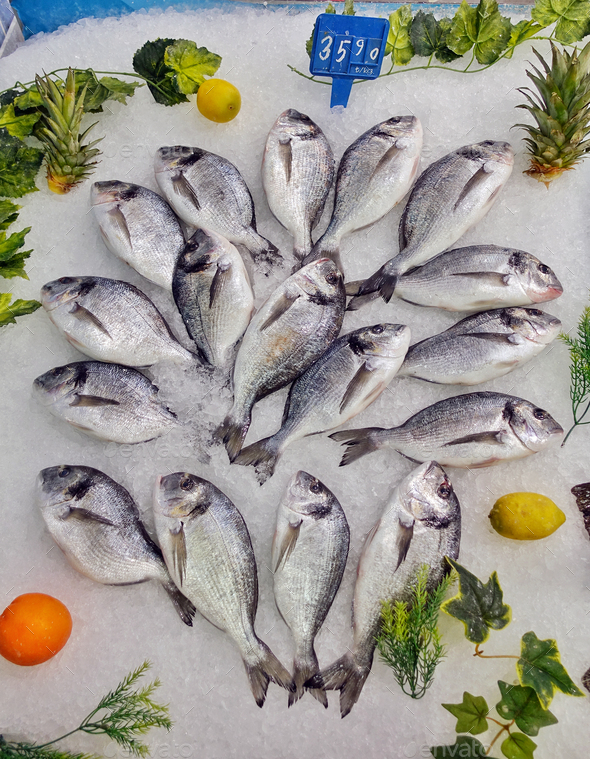 Fish Food in a Fish Market Stand  - Stock Photo - Images