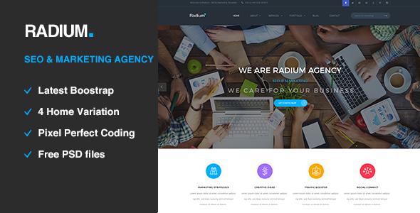 Radium - SEO /Digital Agency HTML5 Template