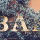 bar signage on a wall covered in flowers - PhotoDune Item for Sale