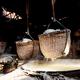 Salt basket in countryside - PhotoDune Item for Sale