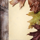 Vintage paper and autumn leaves - PhotoDune Item for Sale