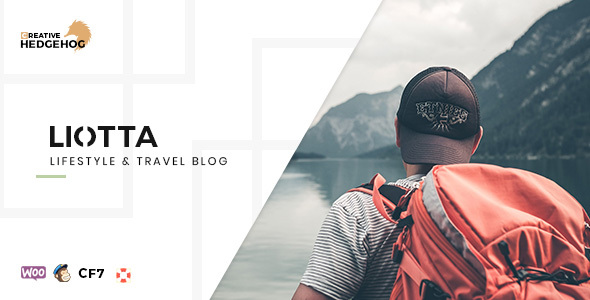 Liotta - a Responsive Blog Theme For WordPress