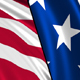 Usa Flags (Part 1) - VideoHive Item for Sale