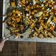 Vegan baked butternut squash - PhotoDune Item for Sale