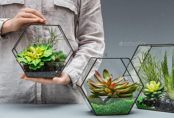 Professional florist concept - Stock Photo - Images