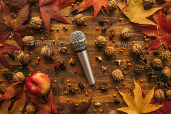 Flat lay top view microphone with autumn arrangement - Stock Photo - Images