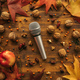 Flat lay top view microphone with autumn arrangement - PhotoDune Item for Sale