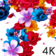 Flowers Logo Reveal - VideoHive Item for Sale
