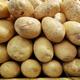 Vegetable Potato - PhotoDune Item for Sale