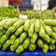 Vegetable Pumpkin - PhotoDune Item for Sale