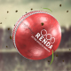Cricket Ball Logo Reveals - VideoHive Item for Sale