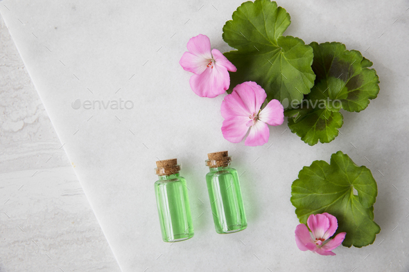 Plant Extract and Geraniums Flat Lay - Stock Photo - Images