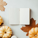 Autumn flat lay  - PhotoDune Item for Sale