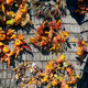 Autumn wreath decorations on wooden wall - PhotoDune Item for Sale