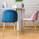 Pink and blue arrangement in dining room - PhotoDune Item for Sale