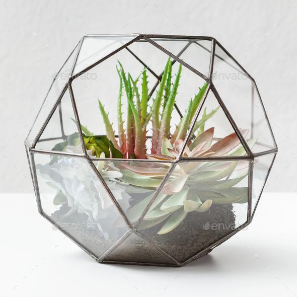 Home garden concept - Stock Photo - Images
