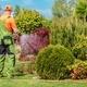 Men Watering Garden Plants - PhotoDune Item for Sale