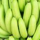 Green bunches of Cavendish banana-4 - PhotoDune Item for Sale