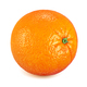 Whole orange isolated on white background - PhotoDune Item for Sale