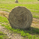 Hay harvest in Tuscany - PhotoDune Item for Sale