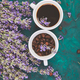 Coffee and lavender flower - PhotoDune Item for Sale