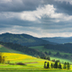 Green and yellow blooming pasture meadows and Pieniny mountains, - PhotoDune Item for Sale
