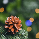 Pine Cone Christmas Decorations - PhotoDune Item for Sale