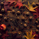 Autumn leaves and fruit - PhotoDune Item for Sale