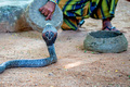 Snake charmer plays with indian cobra - PhotoDune Item for Sale