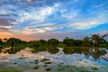 Sunset in African marshland - PhotoDune Item for Sale