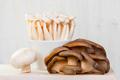 Fresh Mushrooms on the Table - PhotoDune Item for Sale