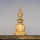 gold buddha in foggy background - PhotoDune Item for Sale