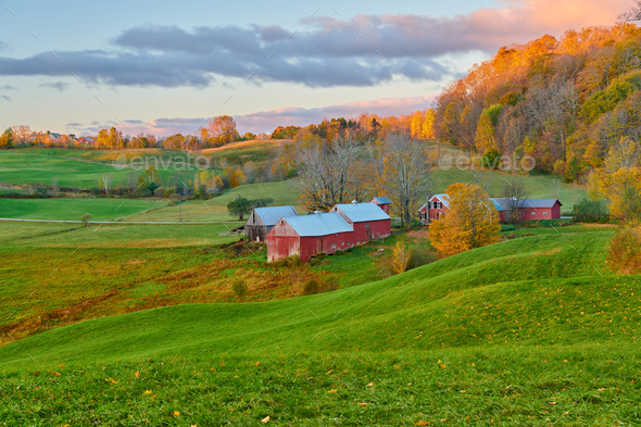 Jenne Farm with barn at sunny autumn morning - Stock Photo - Images