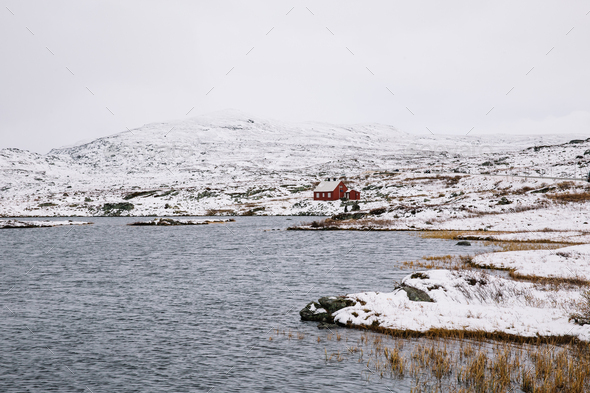 Norwegian Red Cottage surrounded by Snow - Stock Photo - Images