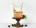 Birthday Cake with Sparkler  - PhotoDune Item for Sale