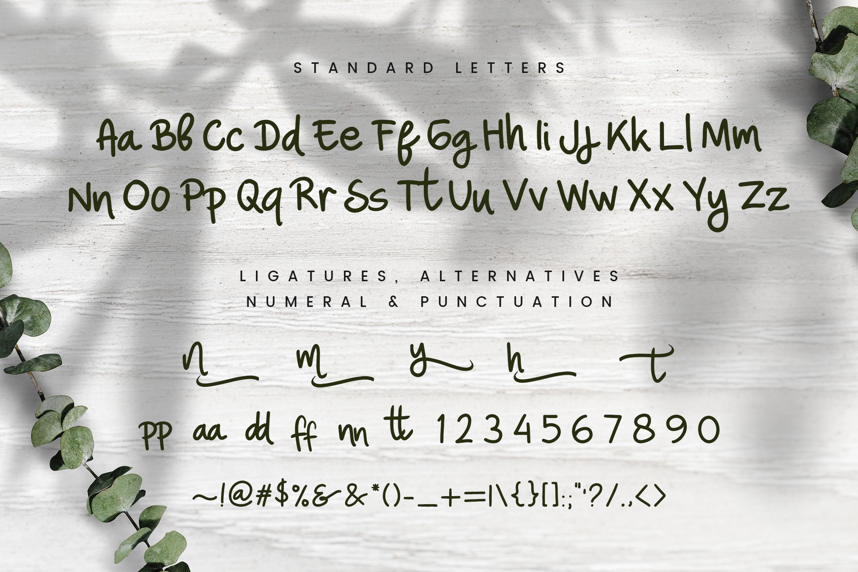 Nina Ninut - Fun Handwritten Script Font