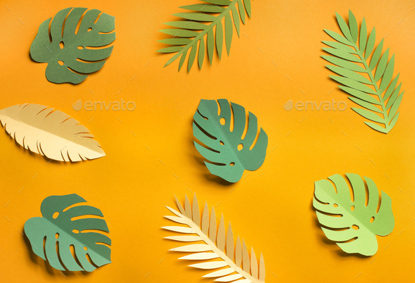 Summer yellow background with different leaves types - Stock Photo - Images