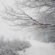 man walking on snowy road in winter nature landscape - PhotoDune Item for Sale