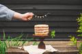 Holiday Organic Naked Cake - PhotoDune Item for Sale