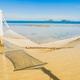 Beautiful empty hammock around tropical beach sea ocean for holi - PhotoDune Item for Sale