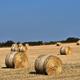 Straw bales, haystack against blue sky. Agricultural concept - PhotoDune Item for Sale