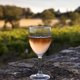 Rose wine glass on a stone wall - PhotoDune Item for Sale