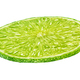 Round slice of lime isolated on white background - PhotoDune Item for Sale