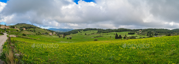 Green countryside of the interior of Zante - Stock Photo - Images