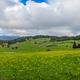 Green countryside of the interior of Zante - PhotoDune Item for Sale