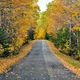 Autumn road in Maine - PhotoDune Item for Sale